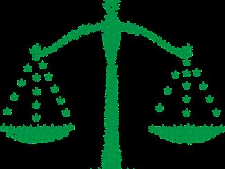 Keine bundesweite Cannabis-Obergrenze