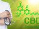 CBD-Öl bei chronischen Schmerzen und Angstzuständen