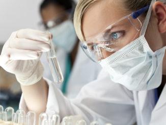 Harvard und MIT erhielten Spende für Cannabisforschung
