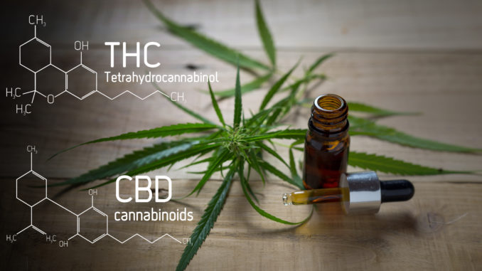 Cannabis und Chorea Huntington