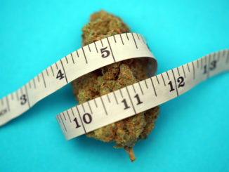 Cannabinoid Tetrahydrocannabivarin oder THCV kann beim Abnehmen helfen