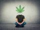 Medizinisches Cannabis gegen Marihuana-Sucht