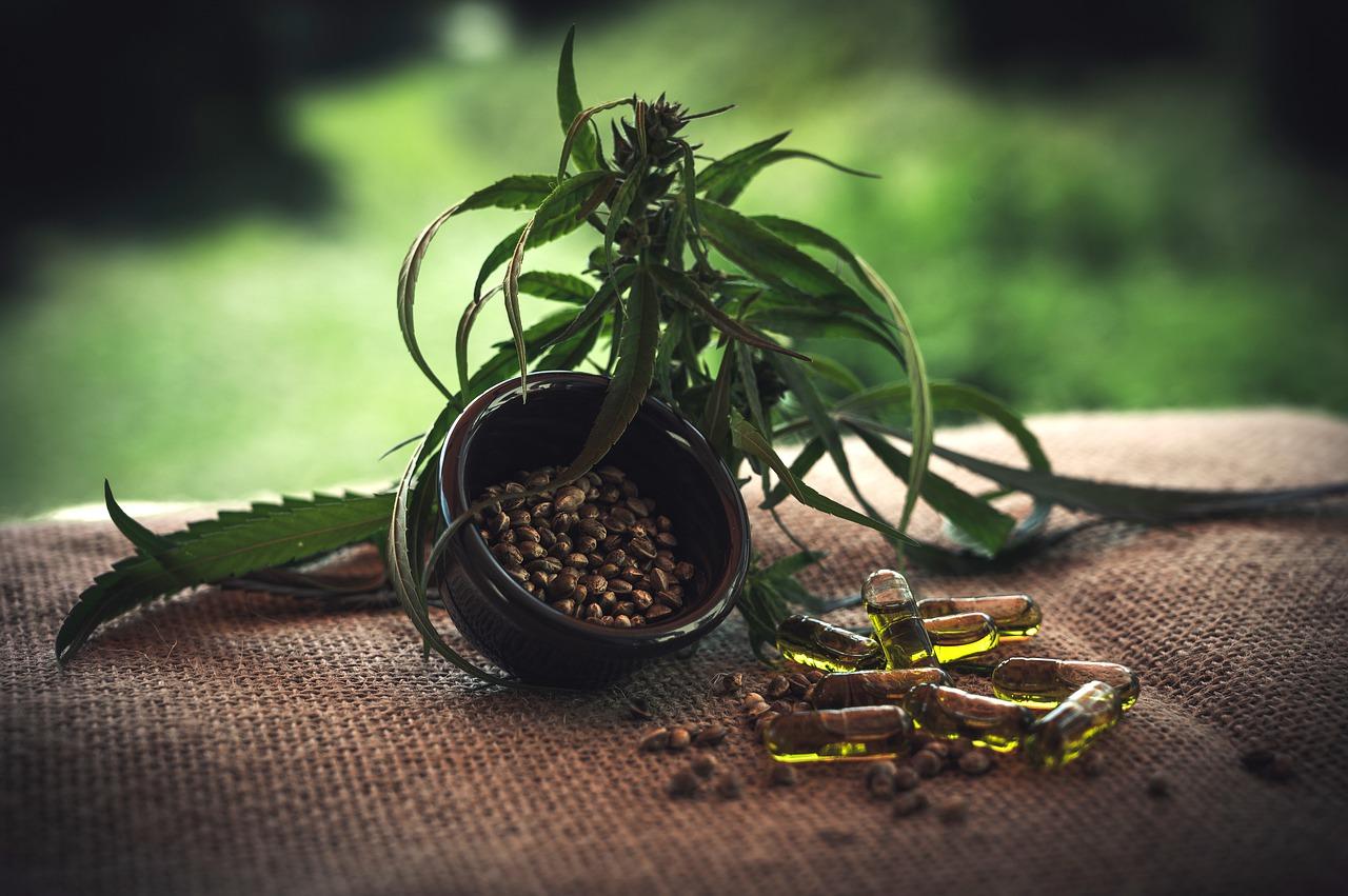 Cannabis zur Behandlung von Cannabisabhängigkeit?