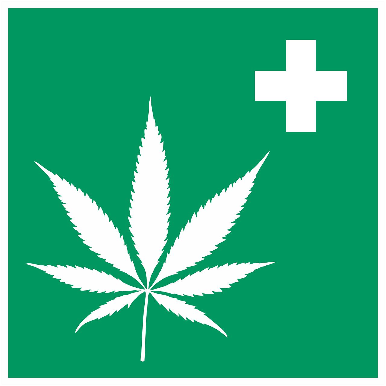 Yale Studie zu Cannabis bei Stress und Schmerzen