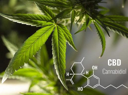 Cannabidiol (CBD) ist kein Betäubungs- oder Suchtmittel